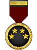 The Total Guess Competition Medal (Master Guesser)